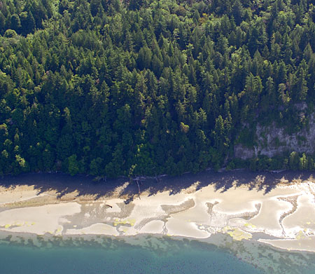 Toandos Peninsula Shoreline.  Photo from Washington State Department of Ecology